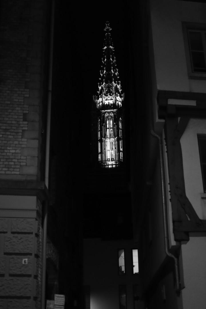 nighttime Münster Shot