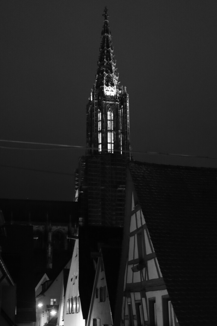 the Ulm Münster at night