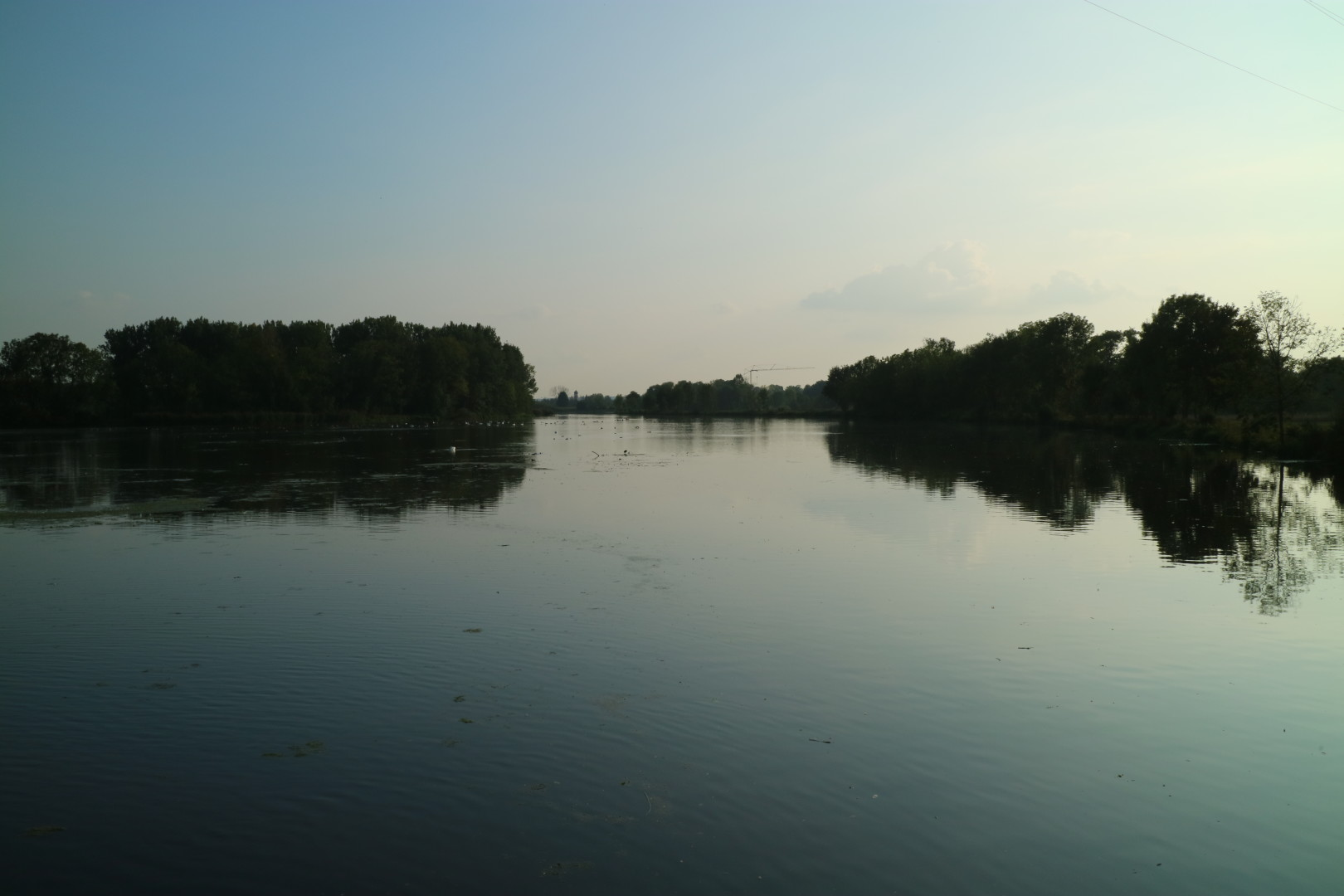 Danube-arm